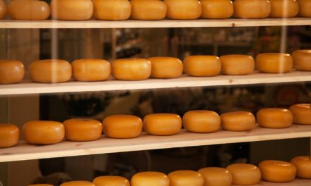Cheeses from Quebec – A rich heritage